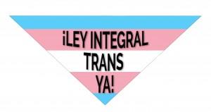 REDLACTRANS-LEY-INTEGRAL-TRANS (2)